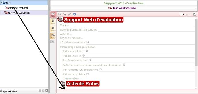 rubis-test